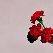 Love In The Future by John Legend (2013)